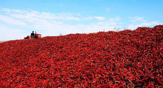 红色致富路