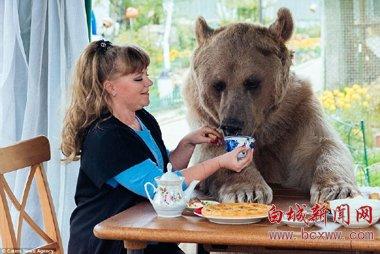 俄夫妇养熊23年