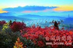 北京将推21处赏红景区