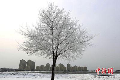 """吉林市城区现大规模""""雾� �"""