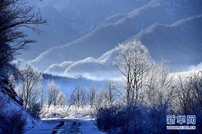 冬日神农架大九湖