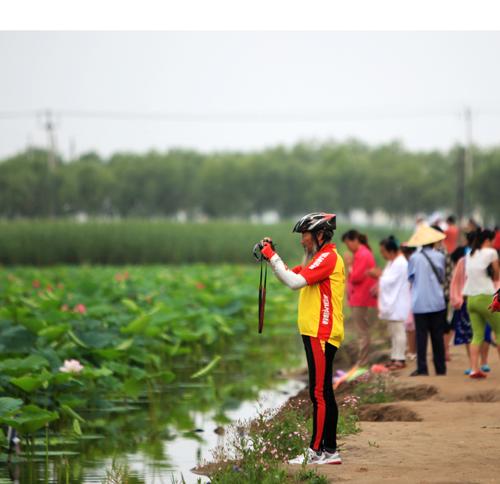镇赉县环城国家湿地公园建设综述
