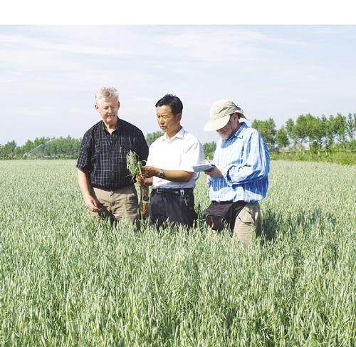 大力发展朝阳产业 打造东方燕麦之都