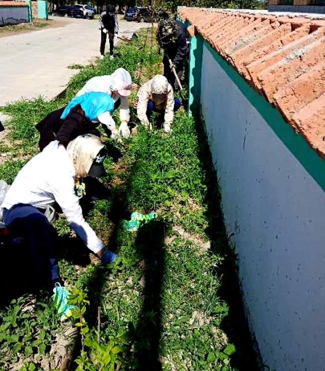 6月20日,镇赉县第二实验小学44名教职员工从清晨六时至下午六时,全天忙碌在包保的镇赉镇新立村后青龙屯,帮助清理街路两侧杂草。李欣摄
