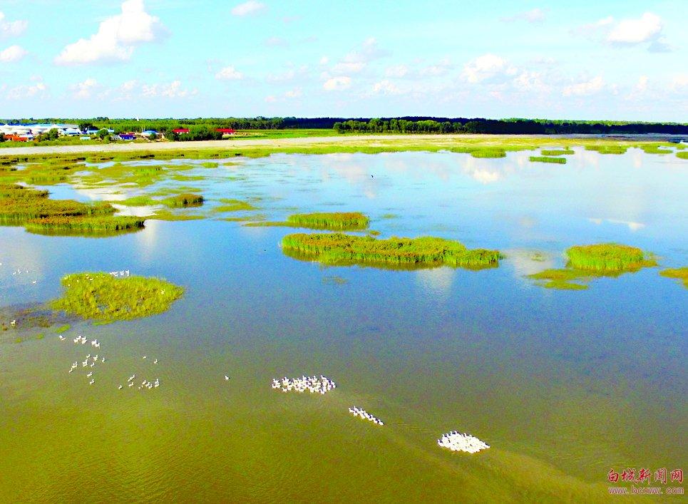 水系白城 大美鹤乡 莫莫格湿地